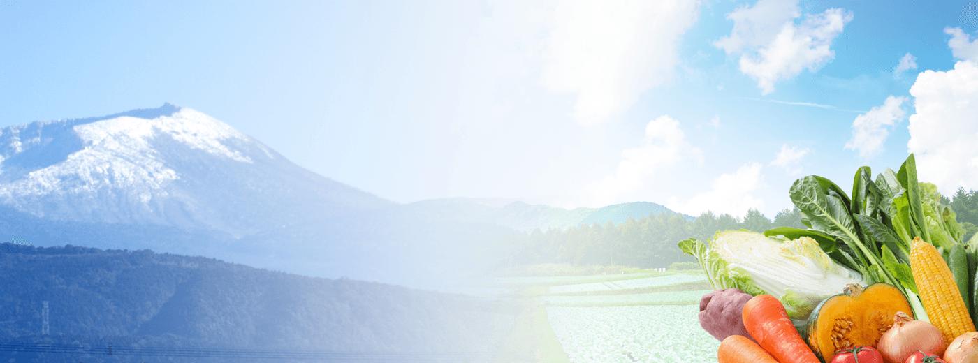 鹿児島野菜の彩園